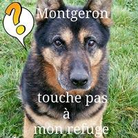 Animaux sans foyer Refuge de Montgeron